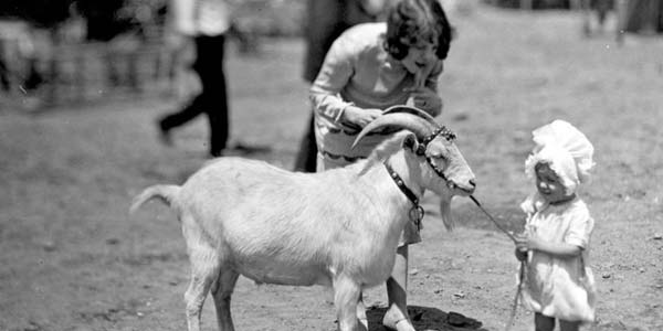 A child with a goat in the backyard.